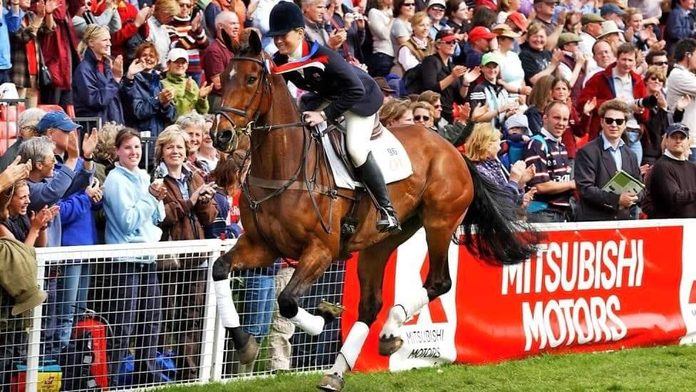 Nixon Equine Vet Consultancy website by 1LG featured rider Pippa Funnell riding Supreme Rock